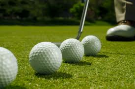 Golf Courses of Sarasota